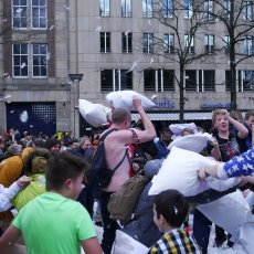 Pillow Fight 2015 16