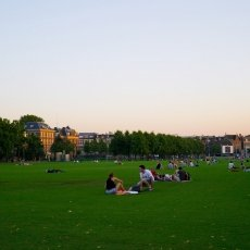 Museumplein in August
