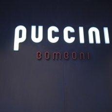 Puccini 10