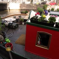 Boat in bloom