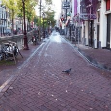 Early morning in the Red Light District 17