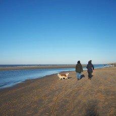 Winter day at Egmond aan Zee 12