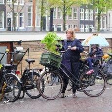 Rain, bikes, children