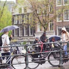 Rainy day in Amsterdam 01