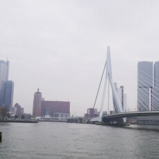 First view over the Erasmus Bridge