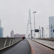 Walking on the Erasmus Bridge