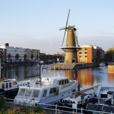 Windmill in Delfshaven