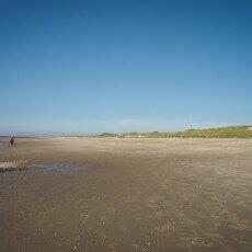 Schoorl Dunes 28