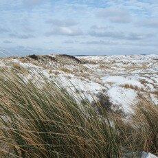 Snow on the beach 23