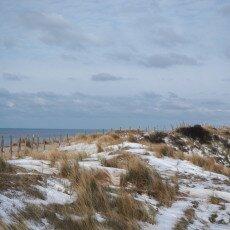 Snow on the beach 21