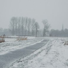 Snow and windmills 04