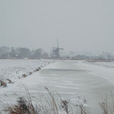 Snow and windmills 08