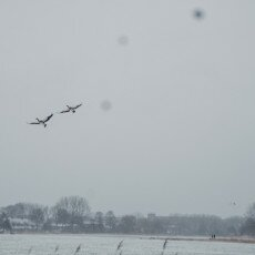 Snow and windmills 17