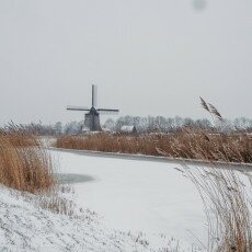 Snow and windmills 18