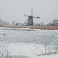 Snow and windmills 19