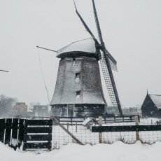 Snow and windmills 20