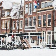 Snow storm in Alkmaar 15