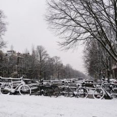 The snows of yesteryear 12