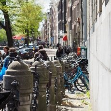 Spring snow in Amsterdam 06