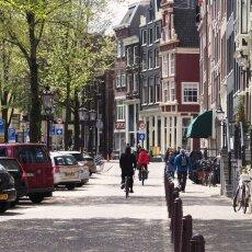 Spring snow in Amsterdam 07