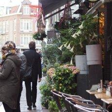Spring snow in Amsterdam 08