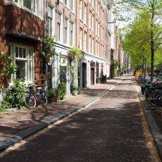 Spring snow in Amsterdam 21
