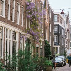 Amsterdam in May 20