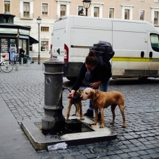 Streets of Rome 12