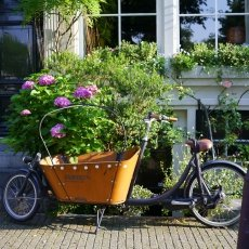 Flowers and bakfiets