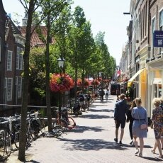 Summer in Delft 07