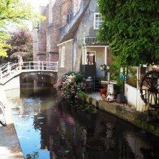 Summer in Delft 08