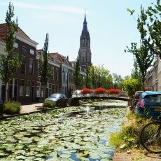 Summer in Delft 12