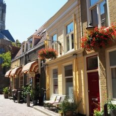 Summer in Delft 20