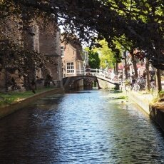 Summer in Delft 14