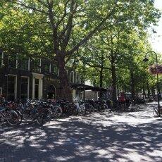 Summer in Delft 23