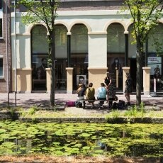 Summer in Delft 15