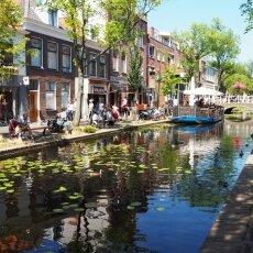 Summer in Delft 18