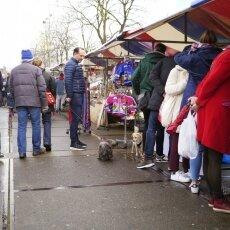 Sunday Market 25