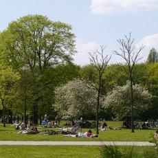 Sunny Day Amsterdam 04
