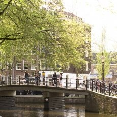 Sunny Day Amsterdam 12