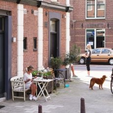 Sunny Day Amsterdam 14