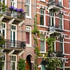 Sunny Day Amsterdam 16