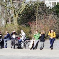 Sunny Spring Vondelpark 02