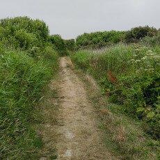Hiking in Texel 04