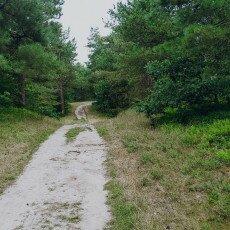 Hiking in Texel 05
