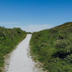 Hiking in Texel 18