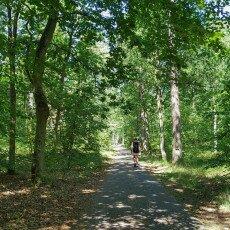 Hiking in Texel 01