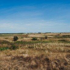 Hiking in Texel 29
