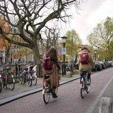 Autumn in Utrecht 26