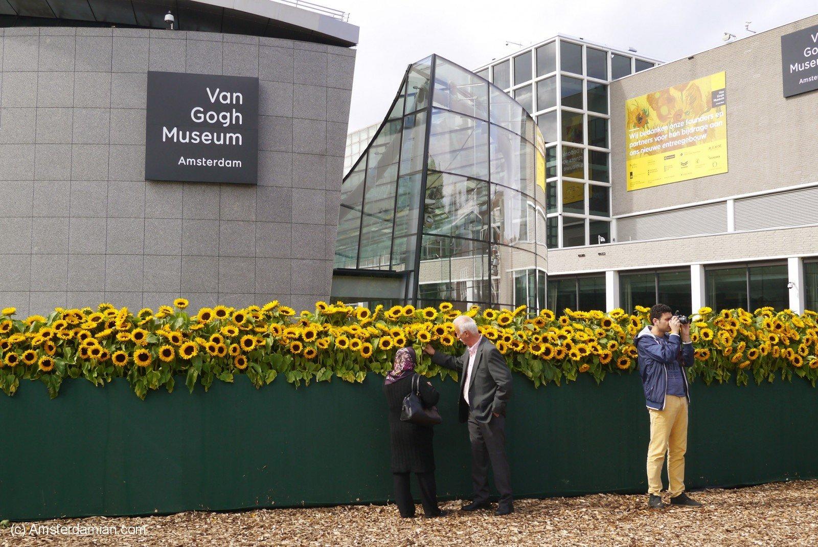 Van Gogh Sunflower Labyrinth 04